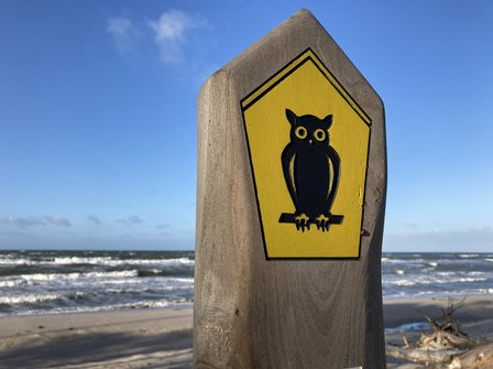 Strand mit Schild Eule in Nationalpark Boddenlandschaft